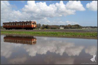 GW,電車旅行,人気